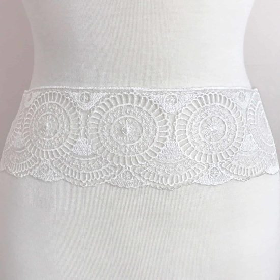 Embroidered Lace on Tulle Border Trim